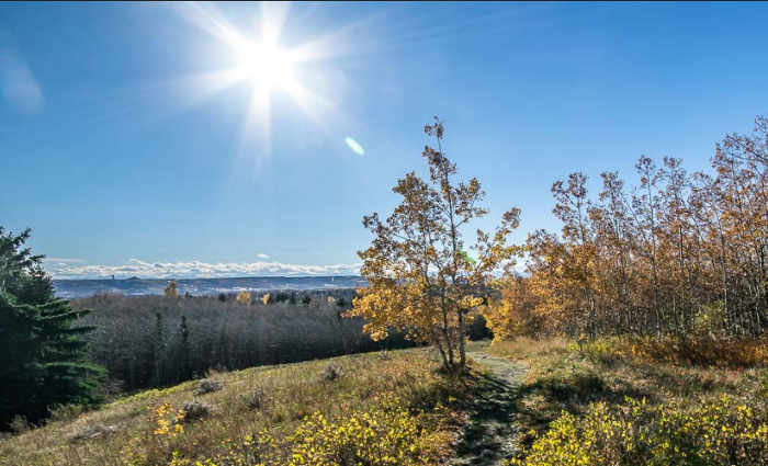 Search Ranchlands real estate for sale