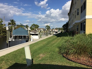 Island Cove dock
