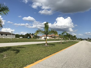 Yucatan Parkway median in NW Cape Coral