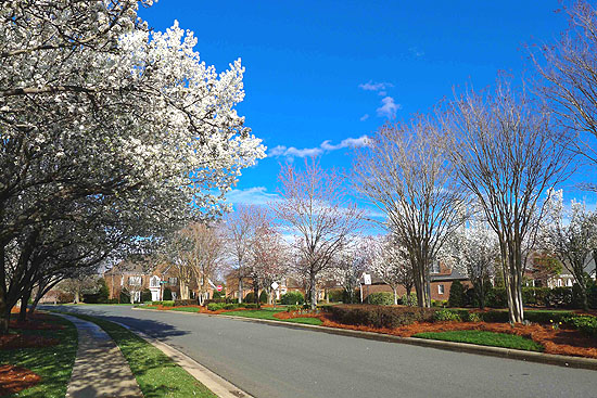 South Charlotte Real Estate Homes And Property