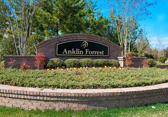 Anklin Forest Homes and Lots for Sale