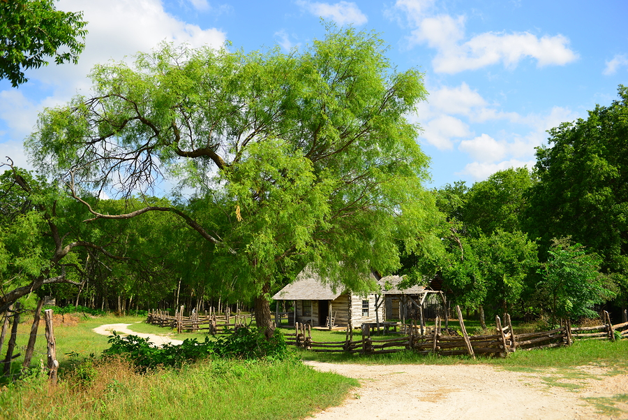 Learn New Braunfels home history.