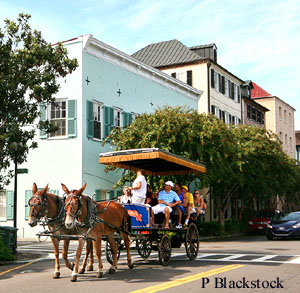 Carriage Rides in Downtown Charleston