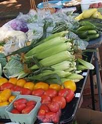 Charlottesville Va Farmers Market