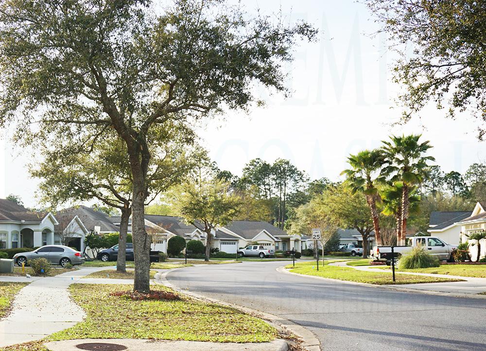 Hammocks neighborhood view
