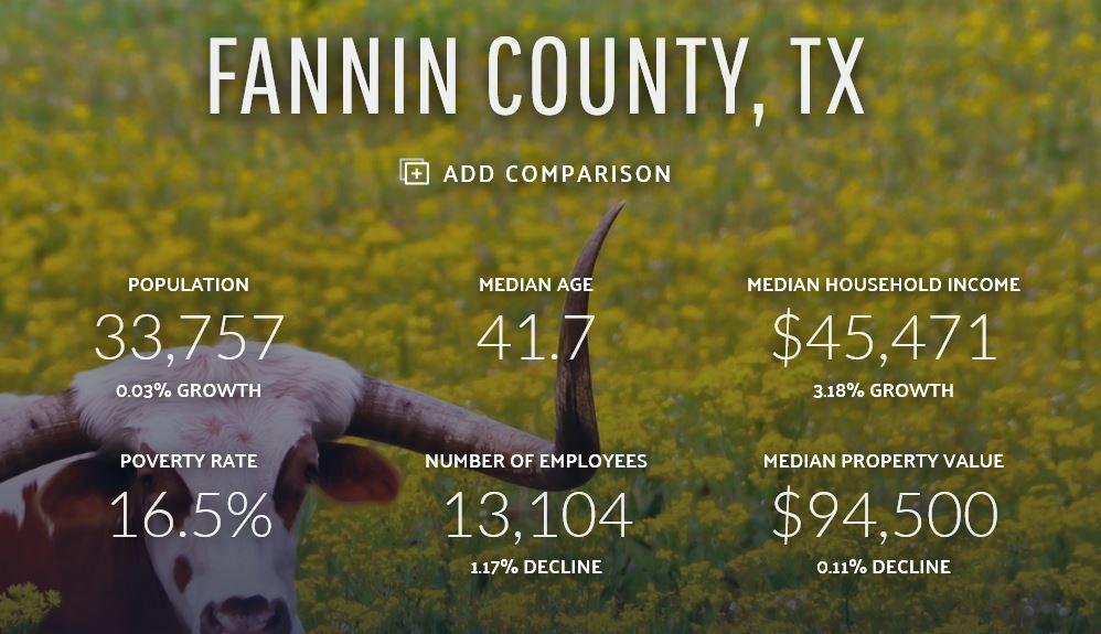 Fannin County Data