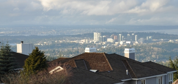 bellevue view