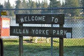 allan york park