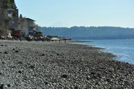 burien beach walk