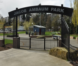 jacob-ambaum-park