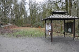 cougar mountain trailhead