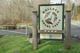 wallace swamp creek park