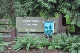 bridle trails state park