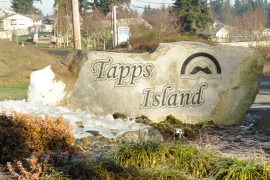 Tapps Island