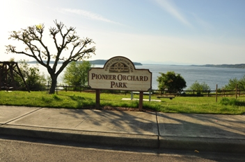 pioneer orchard park