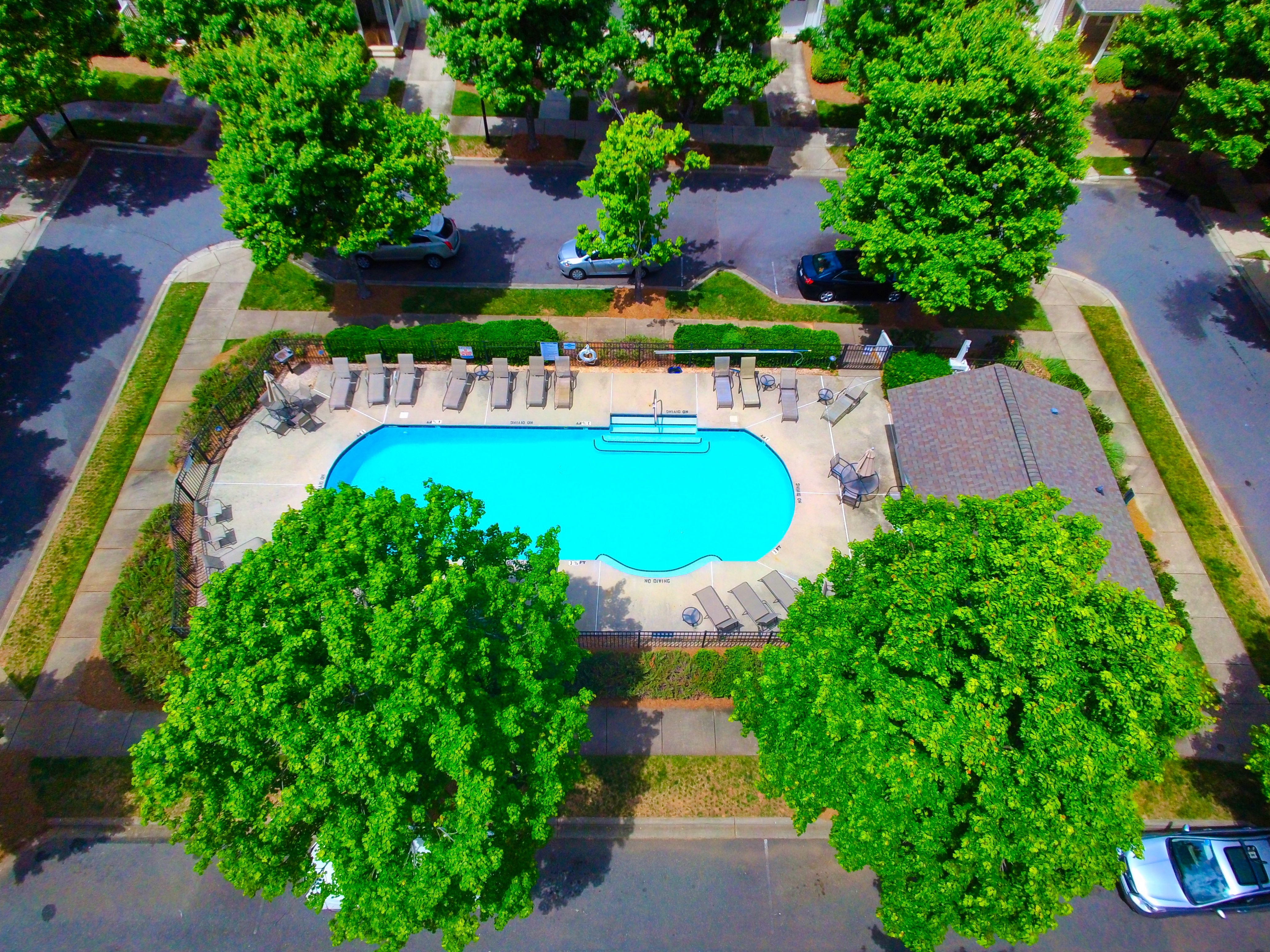 Harborside Pool