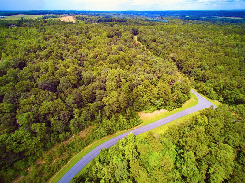 Land In Mount Pleasant's Saratoga