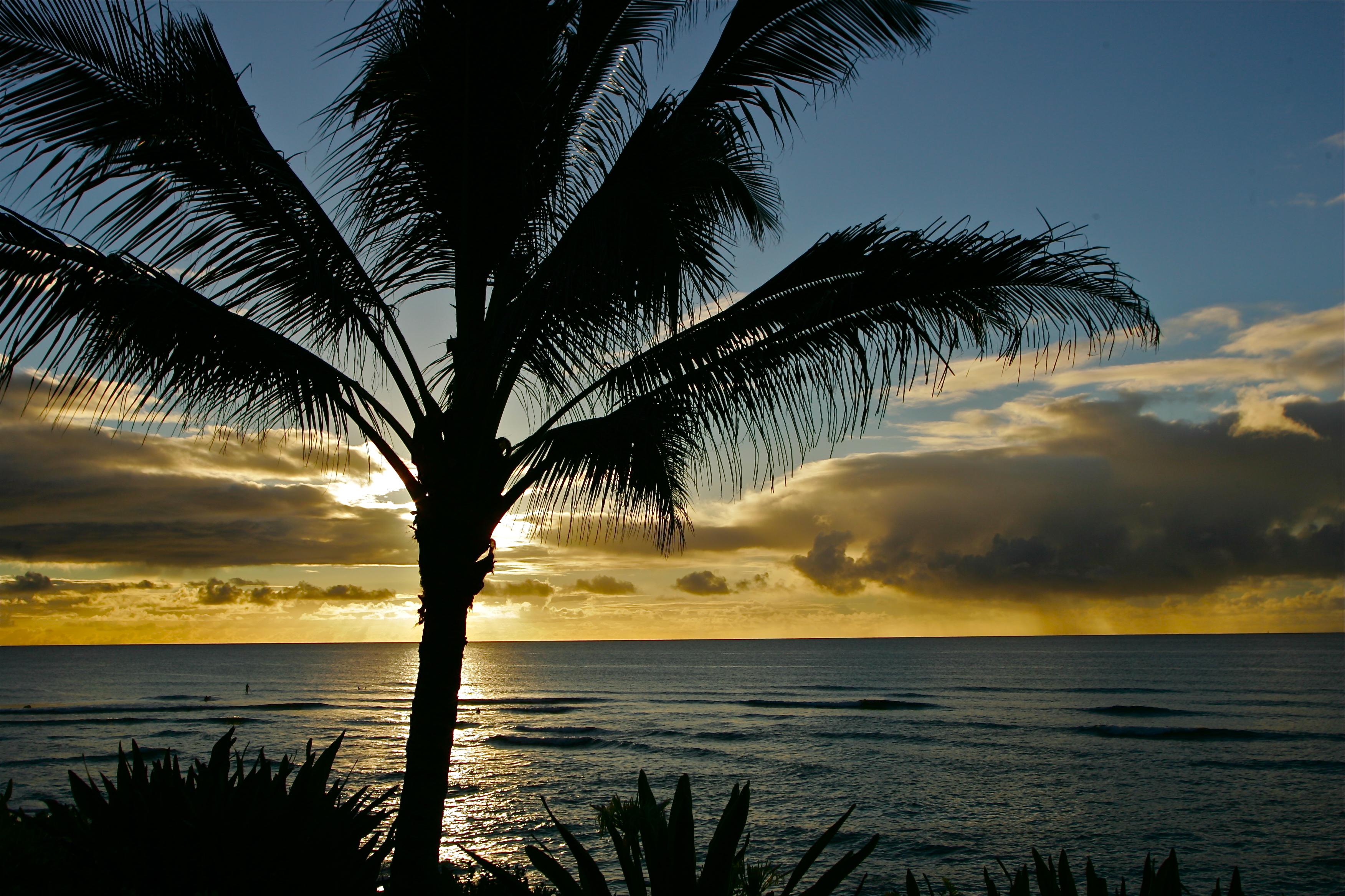 sunset north shore beach house