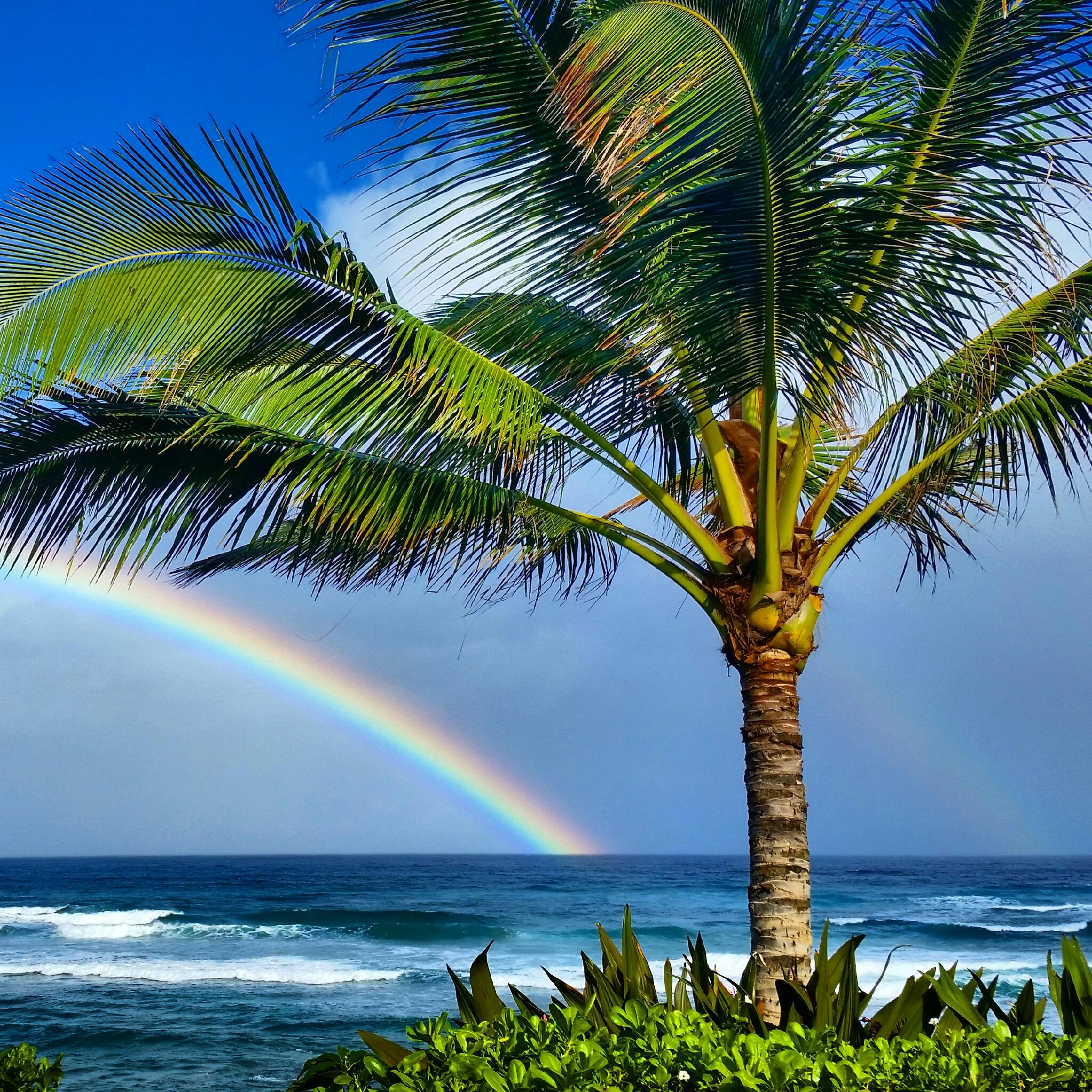 rainbow house oahu hawaii property