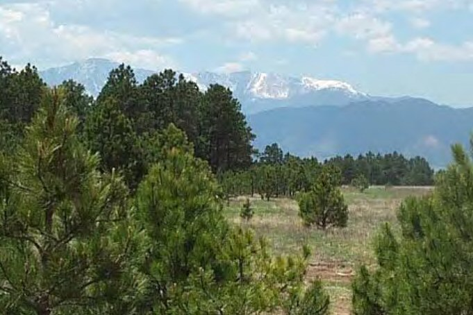 Search Homes for Sale in Black Forest, Colorado Springs