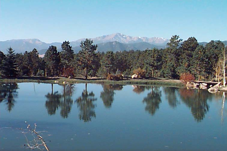 Gleneagle Neighborhood Colorado Springs Information and Homes For Sale