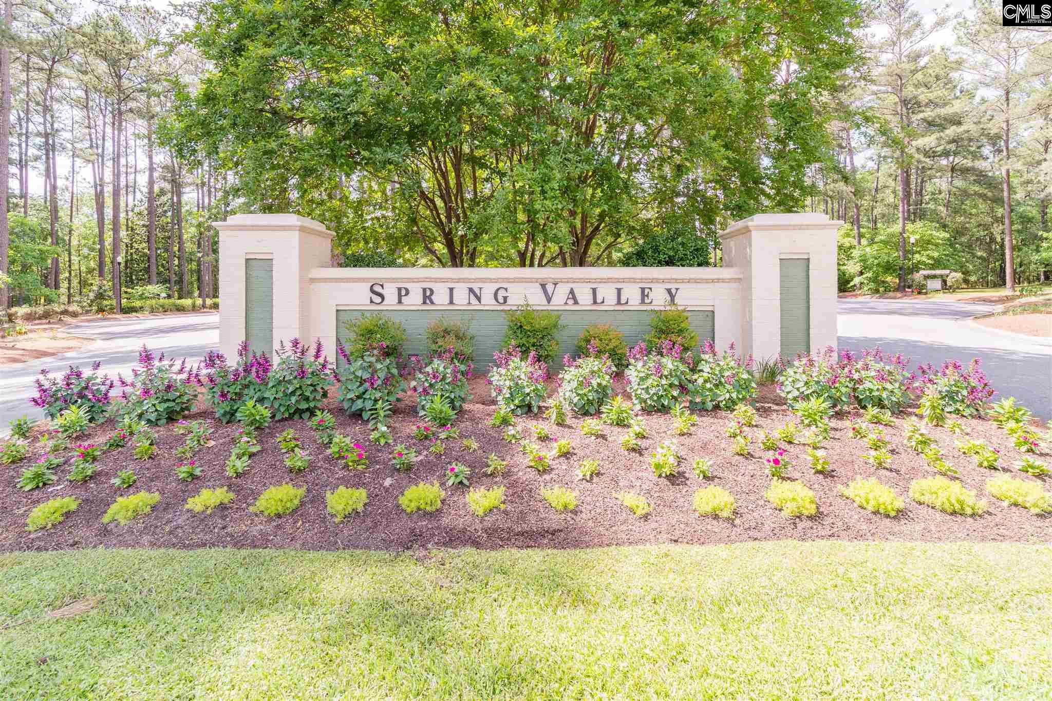 Spring Valley Community Entrance, Spring Valley Homes for Sale