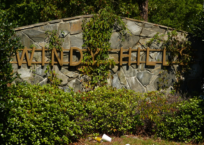 Explore Windy Hill Homes For Sale