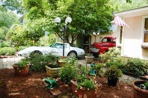 Elmwood Garden