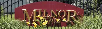 Milnor Place Pickerington Ohio