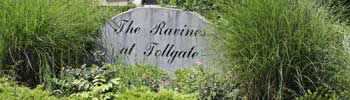 The Raines at Tollgate