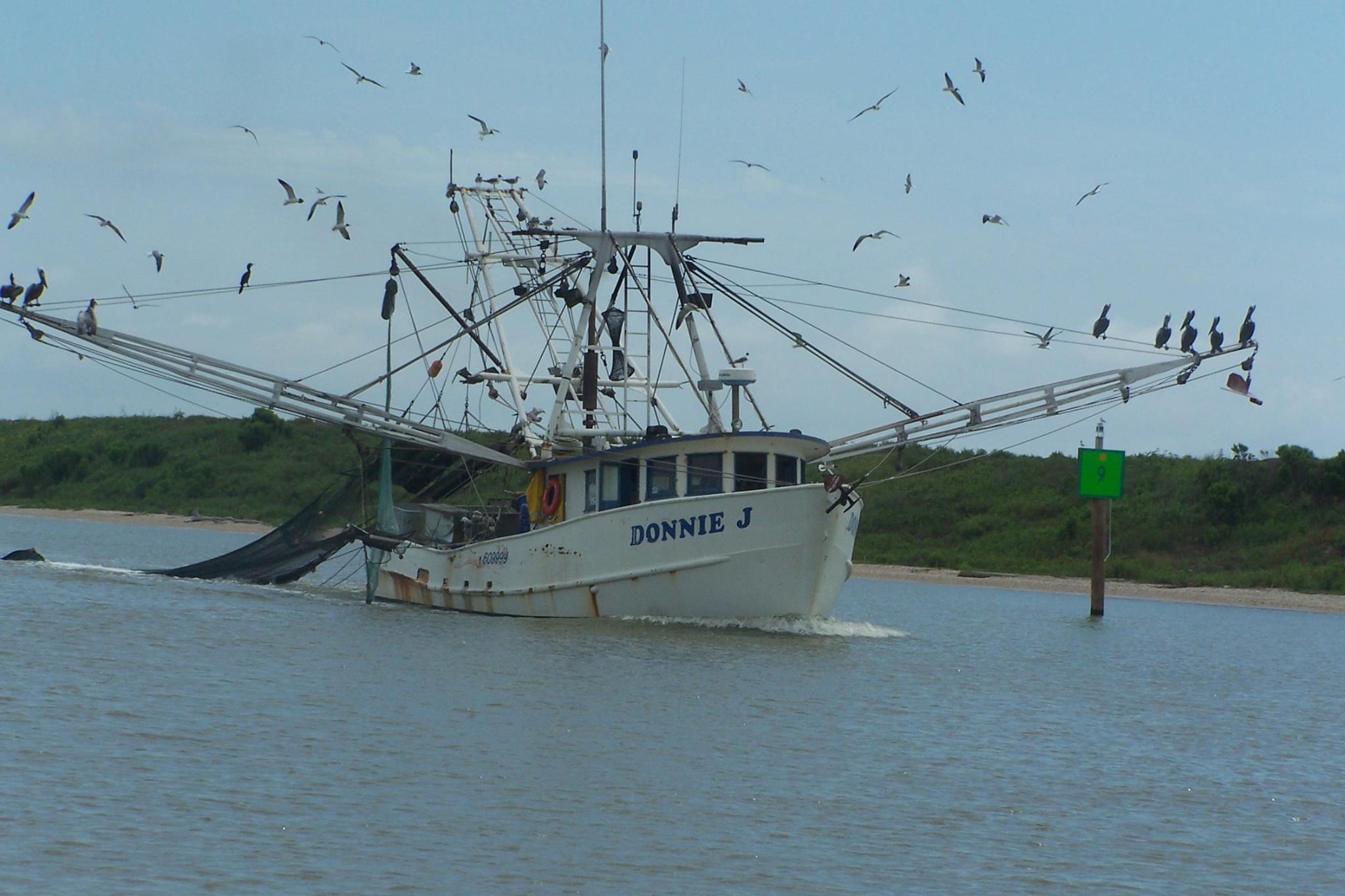 Galveston Shrimp Boats