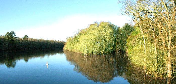 Lake near Baylee Estates