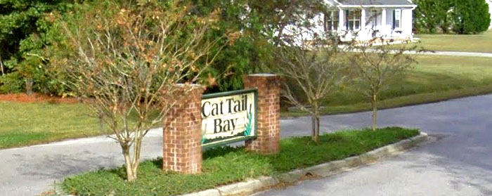 Homes for Sale in Cat Tail Bay