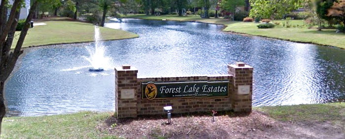 Homes for Sale in Forest Lake Estates, Conway SC