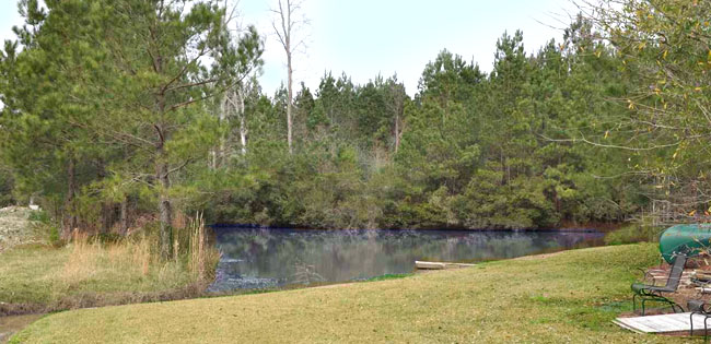Pond in Kellys Cove, Conway