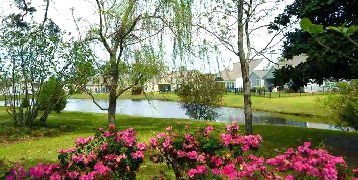 Pond in Kingston Greens