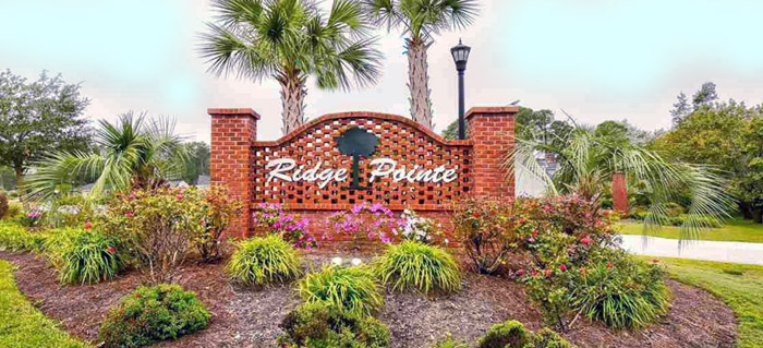 Homes for Sale in Ridge Pointe