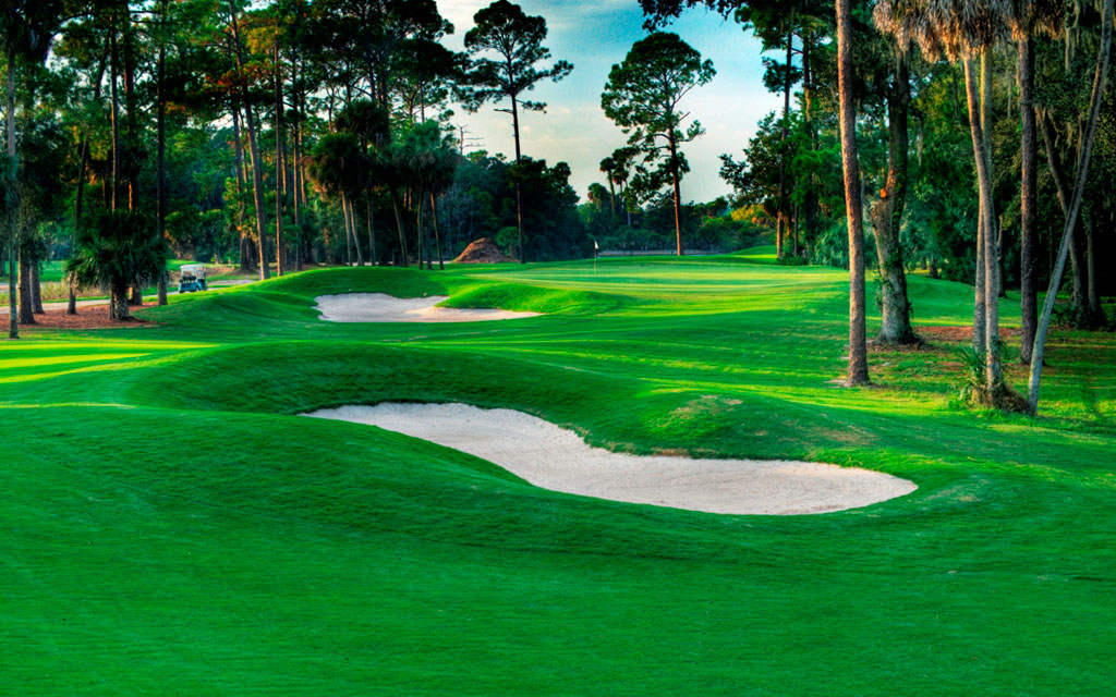 it     palm coast golf course homes for sale   search every home for sale  rh   davesellspalmcoast