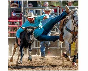 Ramona Rodeo 2019 san diego