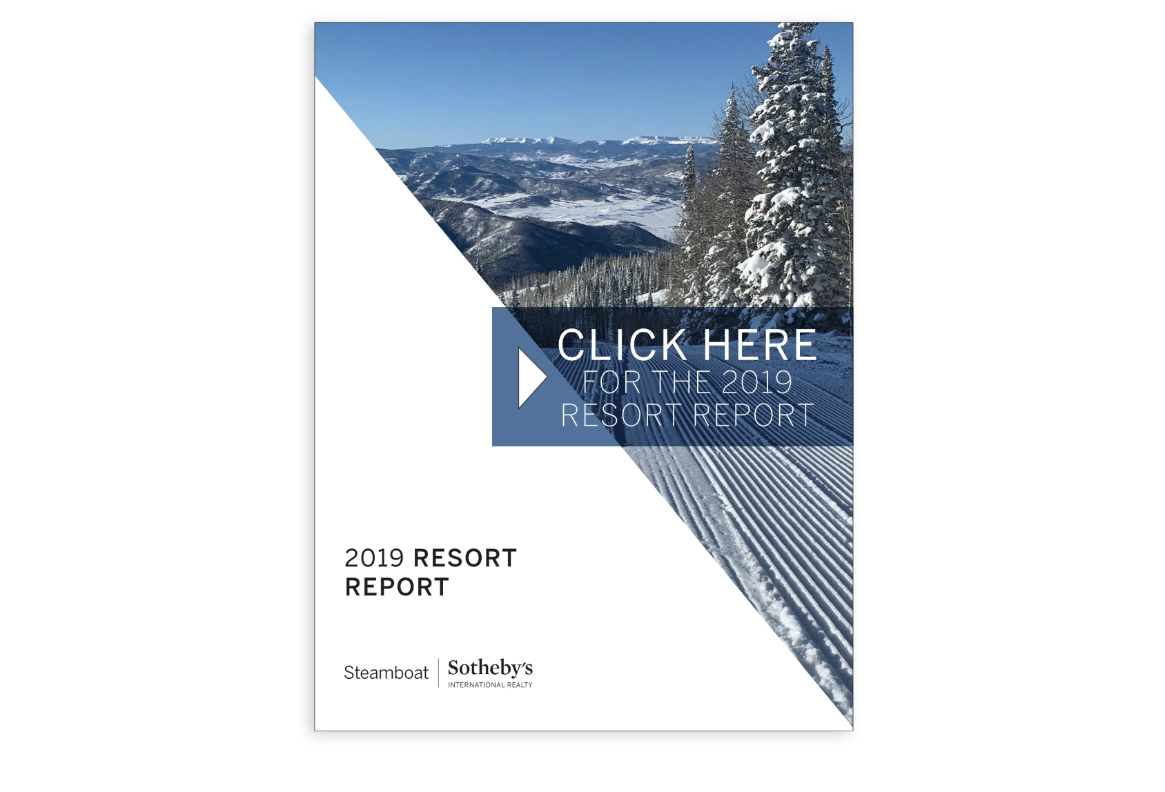 2019 Resort Report