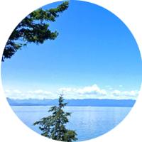 Oceanview Homes & Properties