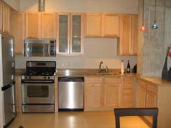Monarch Mills Lofts for sale in Riverfront / Platte Valley Denver