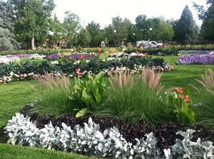 Flowers Bloom at Washington Park - Denver, Colorado