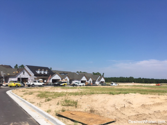 Del Webb Wilmington NC progress - September 2016