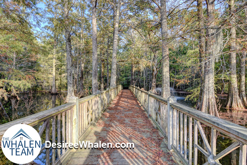 wooded walking trail