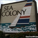 Sea Colony Condominiums - Carolina Beach, NC