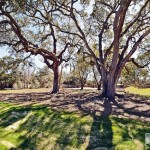 Friendly Oaks - lots for sale