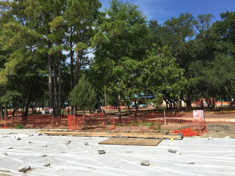 RiverLights Live Oak Commons progress - July 2016