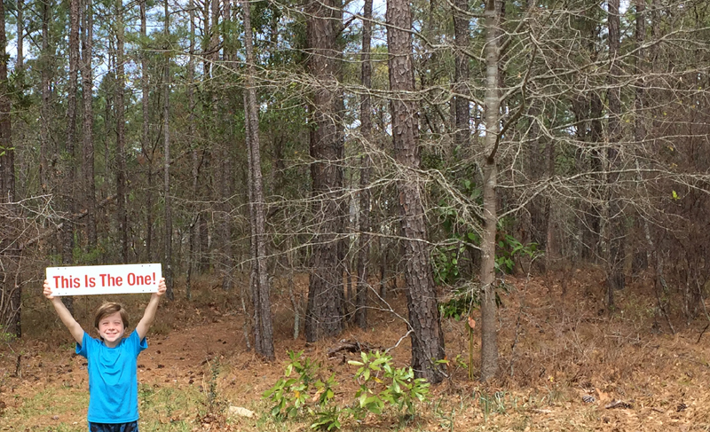 Lot for Sale in Waterberry Plantation Leland NC