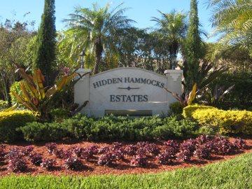 Hidden Hammock Estates